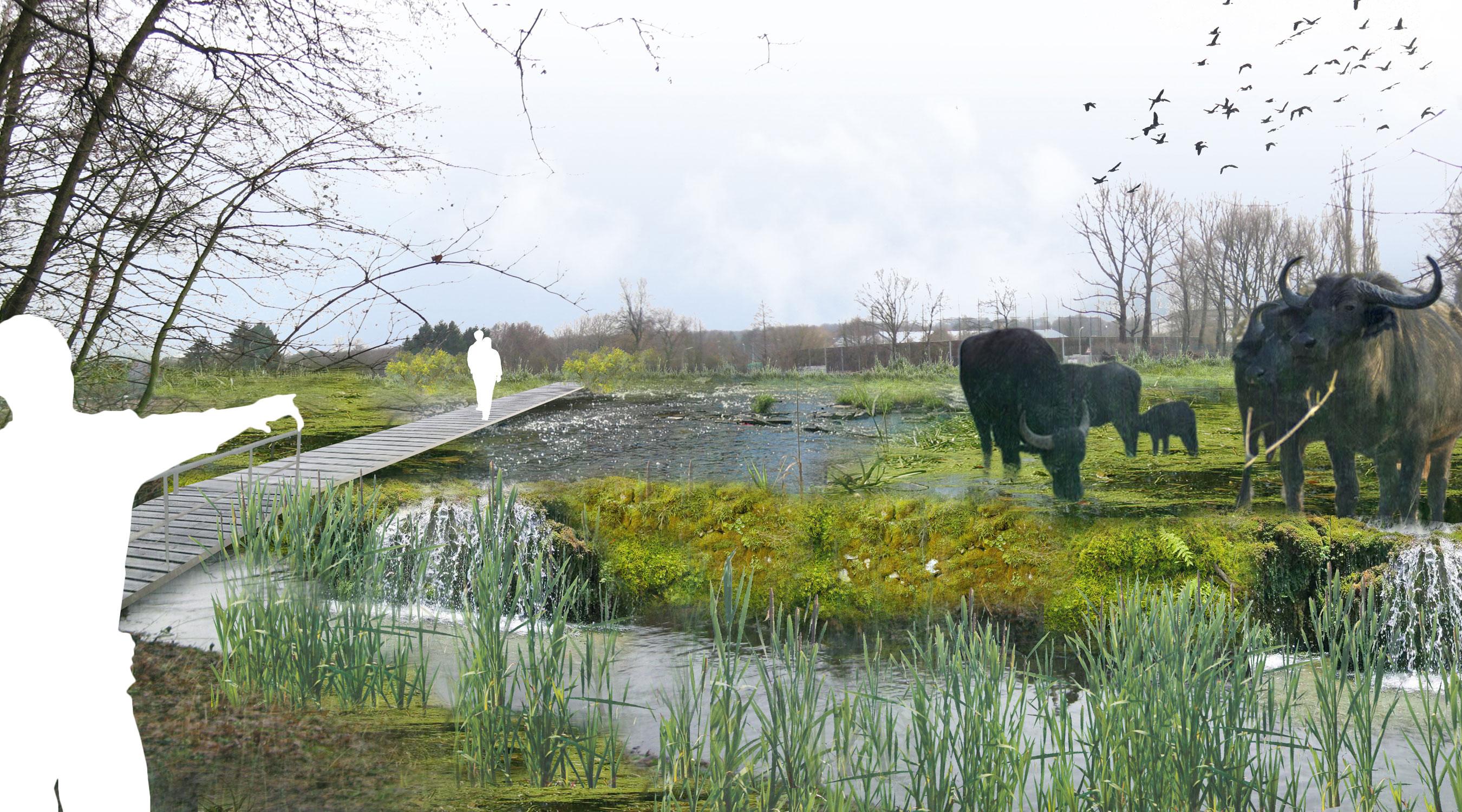 Eimsbüttel Leitstratgie Renaturierung Kollaustrasse