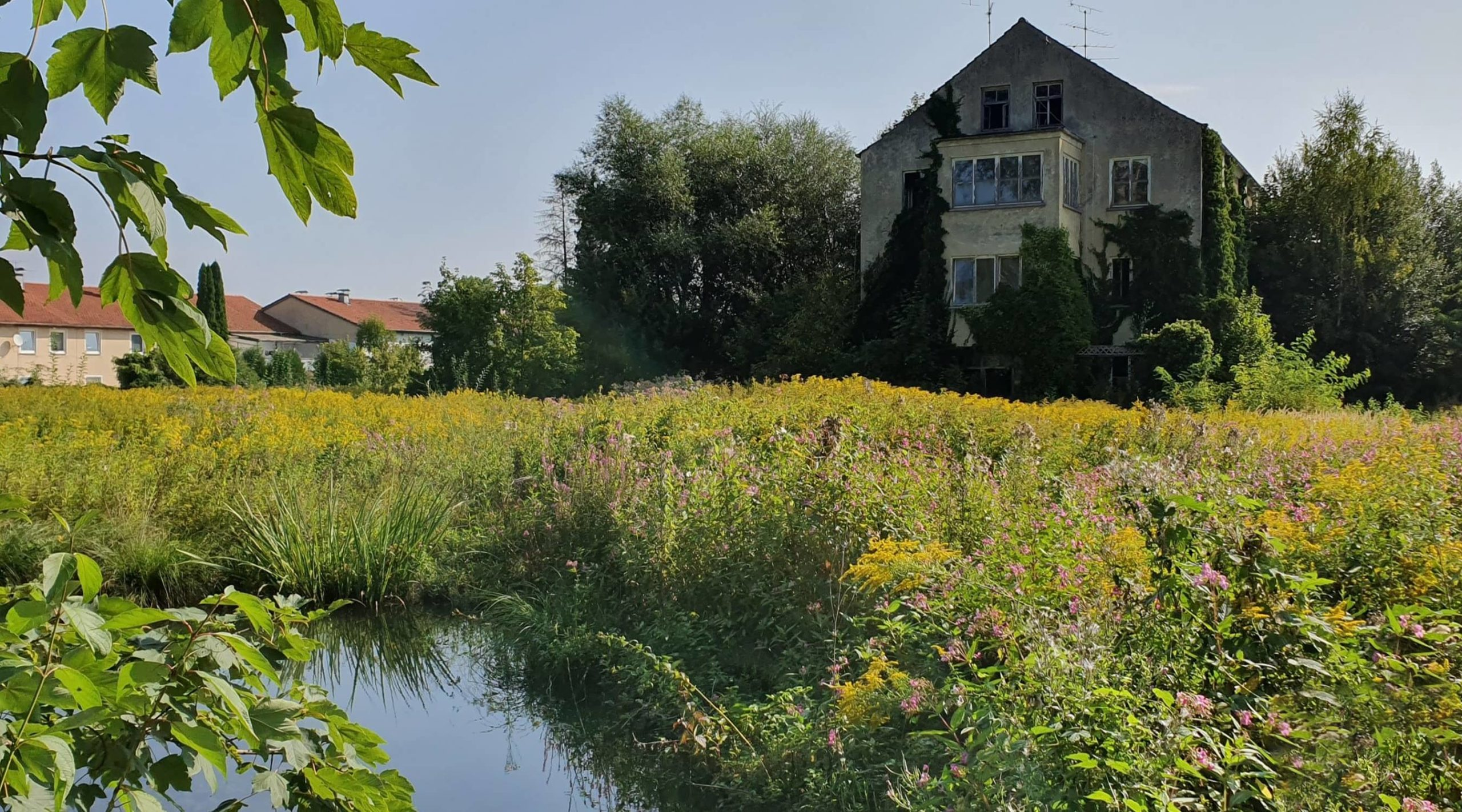 yellow z — Alte Holzschleiferei Hebertshausen